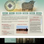 American Celtic Cattle Association