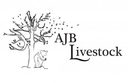 AJB Livestock