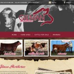 Gilman Shorthorns