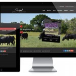 Nagel Cattle Company