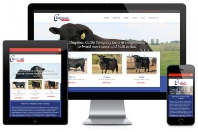 Chapman Cattle Company